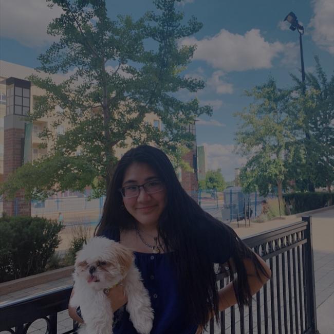 Babysitter in Brant: Alyssa Nguyen