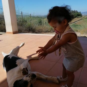 Trabalho de babysitting em Odivelas: Trabalho de babysitting Alexandra