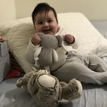 Babysitting job in Brampton: babysitting job Harwinder