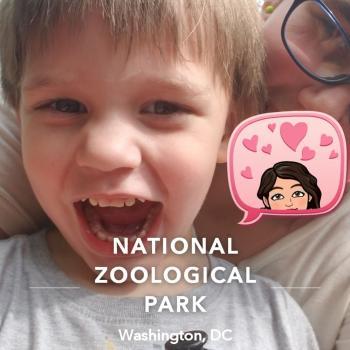 Babysitter Parkville: Brooke