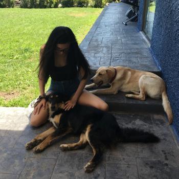 Babysitting job in Providencia: babysitting job Alejandra