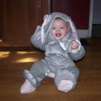 Babysitter in Louisville: Sarah