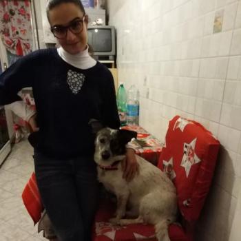 Babysitter Naples: Aldesia