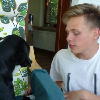 Babysit Bunsbeek: Seb