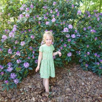 Babysitten Berlaar: babysitadres Sunny