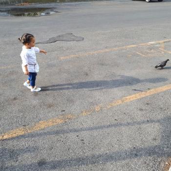 Lavori per babysitter a Prato: lavoro per babysitter La piccola