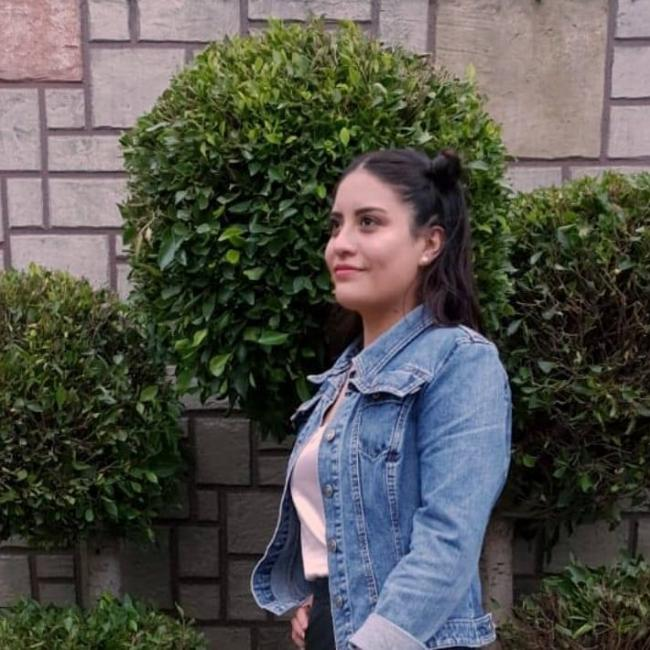 Niñera en Toluca de Lerdo: Arly