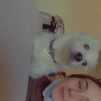 Babysitter in Rockingham: Shauna