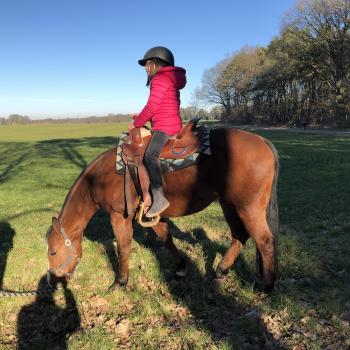 Parent The Hague: babysitting job Zoey
