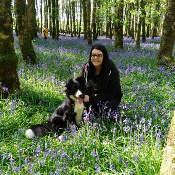 Babysitters in Galway: Rachael