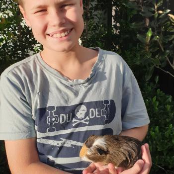 Babysitting job in Sunshine Coast: babysitting job Jane