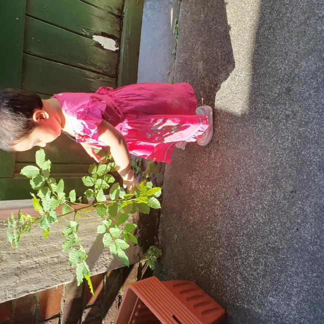 Babysitter in Manchester: Sobia