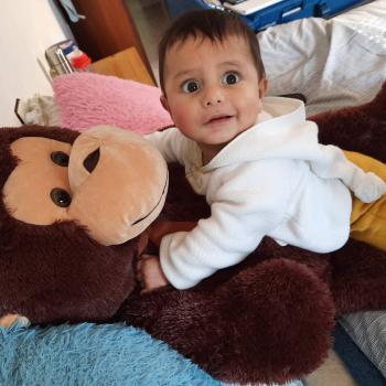 Babysitting job in Albacete: babysitting job Sebas