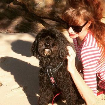 Babysitter Sydney: Susie-louise