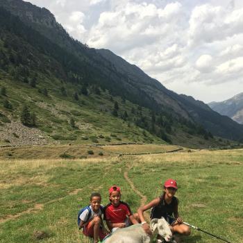 Trabajos de canguro en Denia: Legrand
