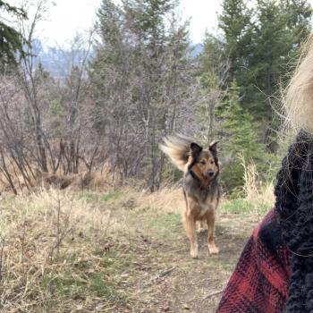 Nanny Calgary: Eve
