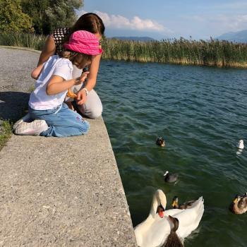 Parent Dietikon: job de garde d'enfants Ekaterina