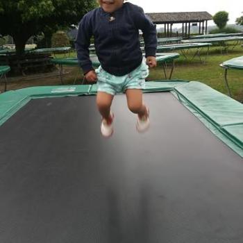 Parent Beveren: job de garde d'enfants Vincent