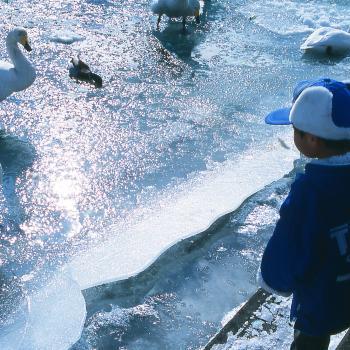 Babysitting job Sapporo: babysitting job なみ