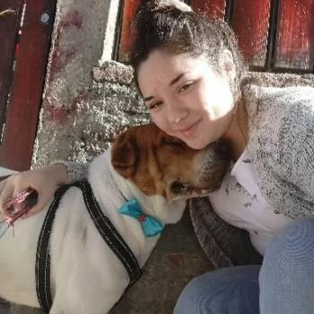 Babysitter in Recoleta (Región Metropolitana de Santiago de Chile): Melanny