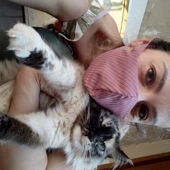Emprego de babá em Curitiba: emprego de babá Karinalinda