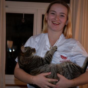 Babysitter Thalwil: Simona