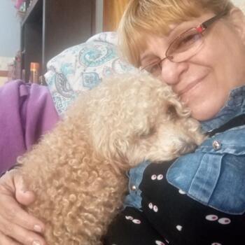 Babysitter in Florencio Varela: Graciela