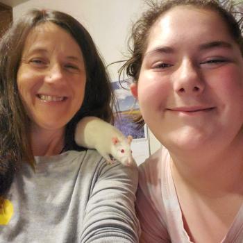 Babysitting job in Fair Oaks: babysitting job Raspberries