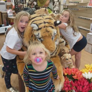 Babysitting job St Albans: babysitting job Sonia