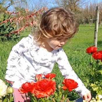 Babysitting job Greytown: babysitting job Hannah