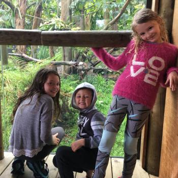 Babysitting job Whangarei: babysitting job Brad