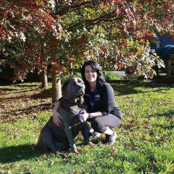 Parent Masterton: babysitting job Juliet
