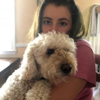 Babysitter Stratfield: Ellery