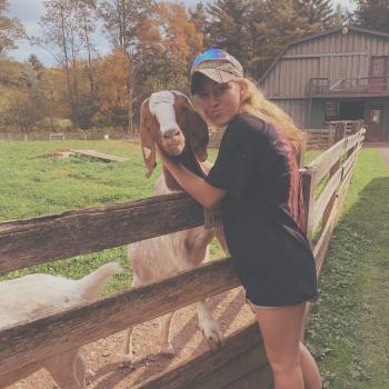 Babysitter Sykesville: Brooke