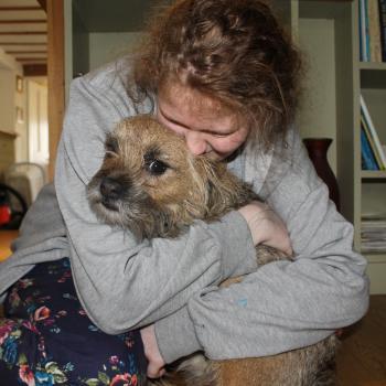 Babysitter in Norwich: Dali
