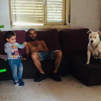 Babysitter Vila Nova de Famalicão: Carina