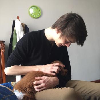 Baby-sitter Le Mesnil-le-Roi: Emilio