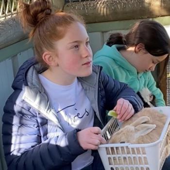 Babysitter in Werribee: Bridget