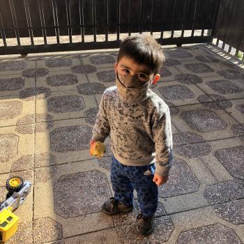 Babysitting job La Florida (Región Metropolitana de Santiago de Chile): babysitting job Maria ignacia