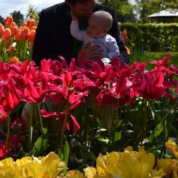 Ouder Alkmaar: oppasadres Jaap