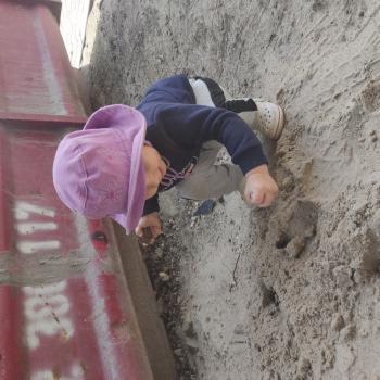 Praca opiekunka do dziecka w Warszawa: praca opiekunka do dziecka Nekomo