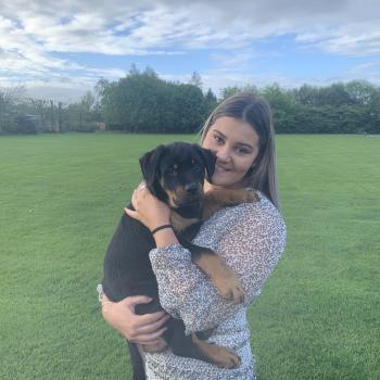 Babysitter in Christchurch: Abby
