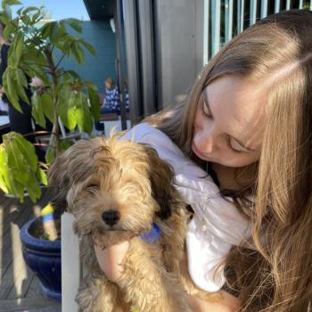 Babysitter in Papamoa: Olive