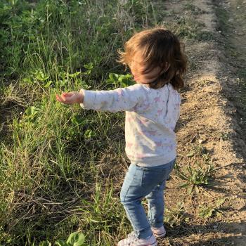 Babysitting job in Sant Gregori: babysitting job Carla