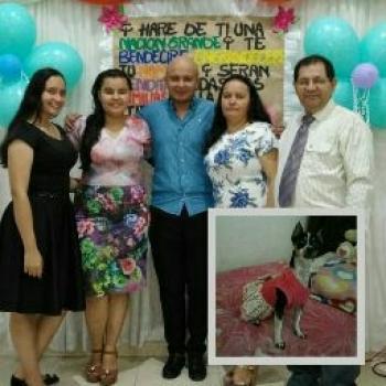 Babysitter in Los Patios: Yaneth