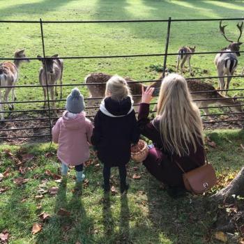 Ouder Haarlem: oppasadres Fenne