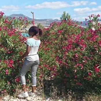 Niñera Pamplona: Promesa