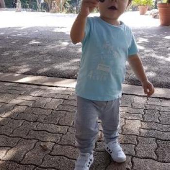Genitore Firenze: lavoro per babysitter Marco