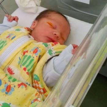 Baby-sitter Pierre-Bénite: Lise