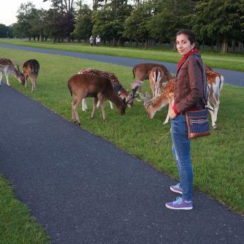 Childminder Dublin: Raquel